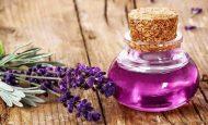 Lavanta yağı faydaları ve kullanımı
